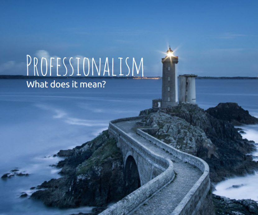 Professionalism – What does it mean?